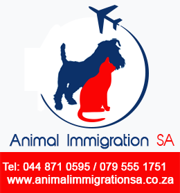 animal immigration sa pet travel pet relocation services